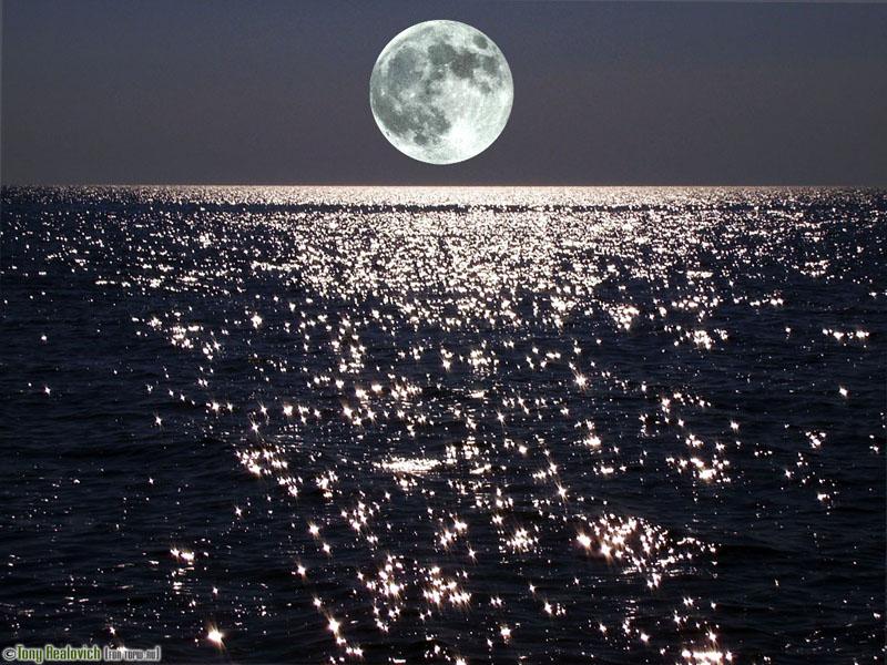 А звезды сияют на небе и в море